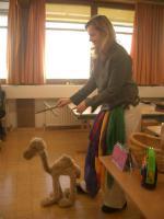Camel-O-Shy tanzt uns was vor
